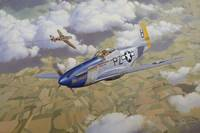 P-51 Mustang - Painting