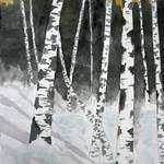 """birch trees art print"" by derekmccrea"