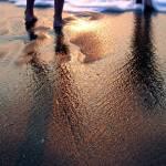 """""""beach fun"""" by dietrich"""