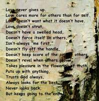 love message tree bark