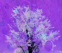 tree 2 purple artistic