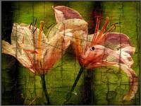 twin lilies grunge painting
