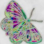 """butterfly color pencil"" by lizmix"