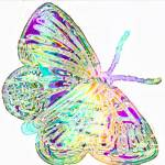 """butterfly pastels"" by lizmix"