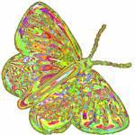 """butterfly avant garde"" by lizmix"