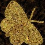 """butterfly brass"" by lizmix"