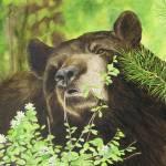 """FINAL Bear"" by saraalexandermunoz"