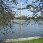 """Washington Monument in Spring"" by cathypiercepayne"