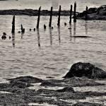 """""""Old Wiscasset Pier"""" by bavosiphotoart"""