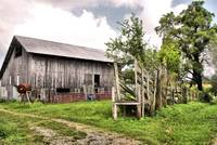 old barn with livestock chute