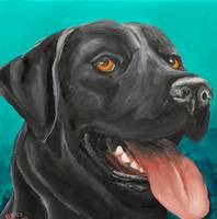 Black Lab on Turquoise
