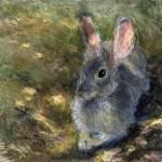 """""""bunny_demure_lg"""" by juliapatt"""