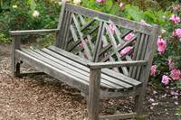 Park Bench in a Flower Garden