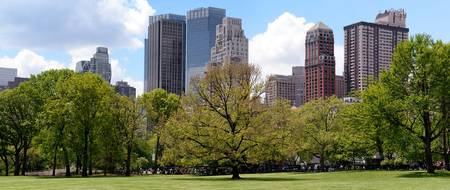 Sheep Meadow Panorama 1