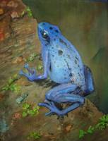 Brilliant Blue Poison Dart Frog