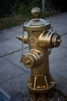 Gold Hydrant that Saved the Mission