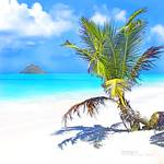 """""""Island Style (Square)"""" by namanaloa"""