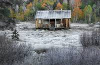 OLd Cabin In Frost And Color