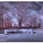 """Brady Commons HDR IR"" by chrisjw"