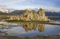 Mono Lake Tufa Reflection