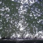 """""""blue shadow"""" by stellartron"""