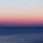 """""""Violet Horizon"""" by ImageMonkey"""