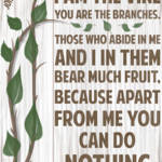 """I Am The Vine You Are The Branches"" by TruthJC"