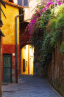Colorful Alley in Portofino