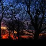"""""""Painted Sky"""" by KerriAnnCrau"""