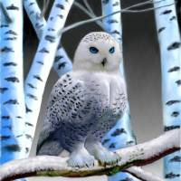 BLUE-EYED SNOW OWL Art Prints & Posters by Glenn Holbrook