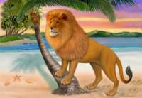 LION ON BEACH