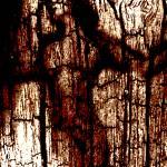 """Vergaenglich"" by Bela-Manson"
