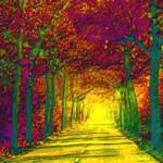 """""""Abstract Decorative Hazy Morning French Autumn Dri"""" by TheNorthernTerritory"""