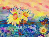 daisies and lake colorful