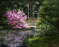 Reflections of Spring