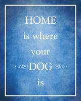 Home is where your Dog is DEEPBLUE