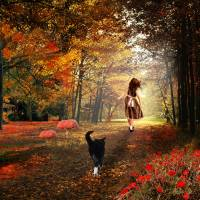 The Girl with the Cat Art Prints & Posters by Anne Vis