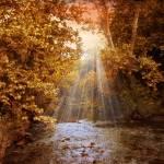 """Autumn River Light"" by JessicaJenney"