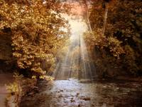 Autumn River Light