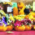 """Mini Pumpkins and Gourds at Farmer"