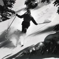 """Powder "" by Tony Gauba"