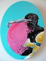 Magnificient Frigatebird with Breast Pump