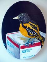 Baltimore Oriole with Medium Flat Rate Box