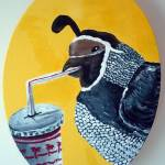 """California Quail with In-n-Out Refreshment"" by Polylerus"