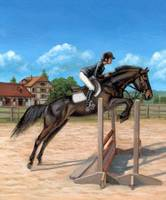 Swiss Warmblood Horse
