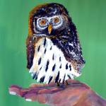 """A Pygmy Owl You Can Hold in Your Hand"" by Polylerus"
