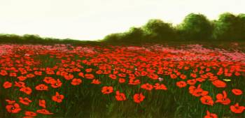 fine-art-painting-poppies-new-emerald-isle_3200