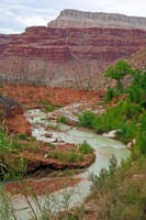 Havasu Creek from Lower Navajo Falls