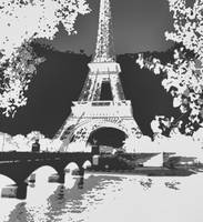 Eiffel Tower Seine River Enhanced B&W negative cro