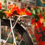 """Bicycle Flowers"" by raetucker"